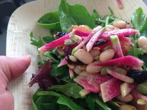 Freshly picked mixed winter greens, slaw of watermelon radish, cannellini beans, raisins and sprouted pumpkin seeds, Meyer lemon vinaigrette. VerTerra sustainable dishes. Yum!