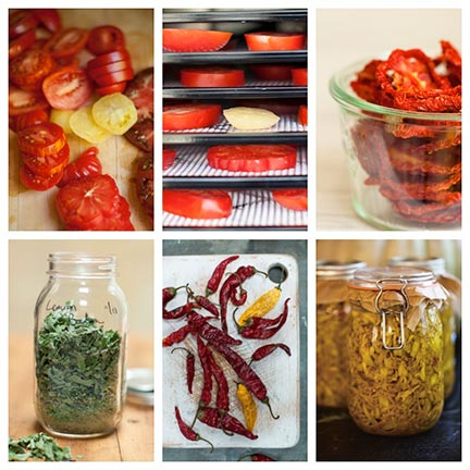 ECLW-Fall2014-Blog-Tomatoes-Drying